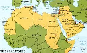 Arab league2